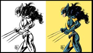 All new wolverine by Paterdixit