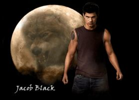 Jacob Black Wallpaper 2 by Mistify24
