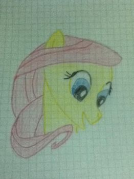 Just fluttershy by schandawg