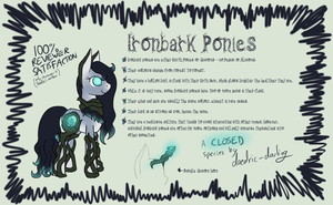 Ironbark Ponies - Reference Sheet by daedric-darling