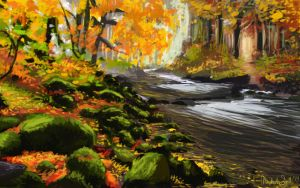 Salmon River Study by FrayedDawn