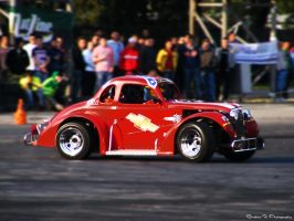red bug by rooteanu