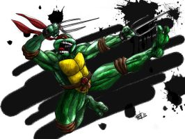 Ninja Turtles - Raphael by Felipe-Rodrigues