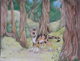 Through the Forest by Teahorse
