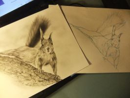 WIP - with first sketch by Adniv
