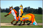Walk in the Park by James-Foxtaur