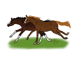 Spezi and Tilly an pasture by Saerl