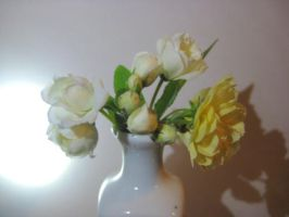 Spring 2015 Two Colored Roses by HappySpirit4