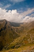 Gavia by davidemazzocchi