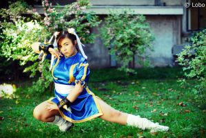 Street Fighter - Chun Li by lillitfairy009