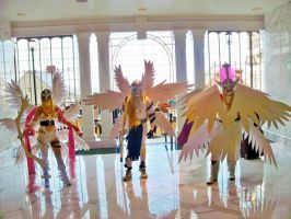Angel Digimon Group by itsthekitsunekid