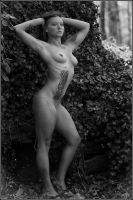BW in the Ivy by Magicc-Imagery