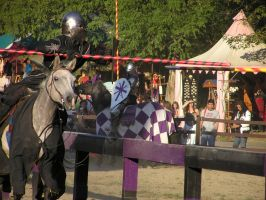 Labor Day Joust 3 by TheMightyQuinn
