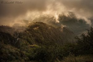 Stratus by Annabelle-Chabert