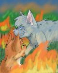 Ashfur's Betrayal by AlexE98