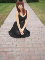 Black Lace 2 by Fluffybunny29stock