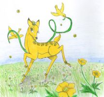 Buttercup by greydeer2010