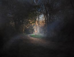 Path in Dream by Phostructor