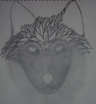 WIP Wolf Face by AkuaSeaWolf