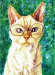 Glasses by Meorow