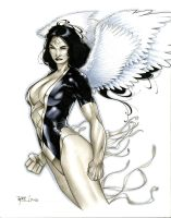 Dawnstar Heroes Con 2013 Commission by RichardCox