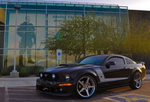 Roush Mustang 2 by TalkingBear177