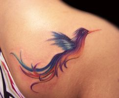 Freehand color bird by hatefulss