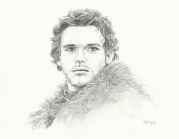 Rob Stark by Powerfulwoodelf