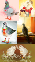 pigeons by TeaRabbit
