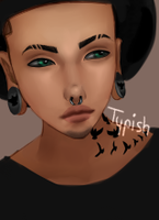 Typish by Lawite