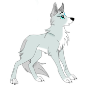 Aurora My OC Wolf by Anka77744