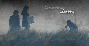 Goodbye, Dobby by LeanneHailer