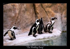 The Wedding Party by jazzkidd