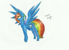 Dashie by Careness