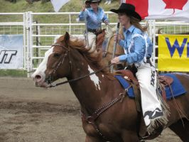 Rodeo Horse Stock 2 by horsecrazycool