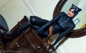 Catwoman 2 by Insane-Pencil-Too