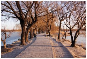 Summer Palace Park 1 by phrozendesign