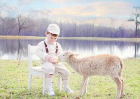 Boy and lamb by Jeni-Sue