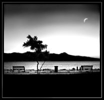 Lonely Night by qrpw