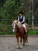Stock 138: cold-blood horse by AlzirrSwanheartStock