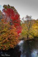Autumn River by peterjdejesus