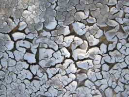 Nasty Cracks by Neriah-stock