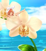 BanQ_Sensation of Orchid by BanQ