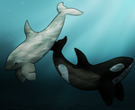 Whales by AtIantiic