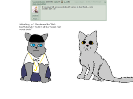 Q.24 by Ask--Jayfeather