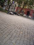 pioneer square by electric-stock