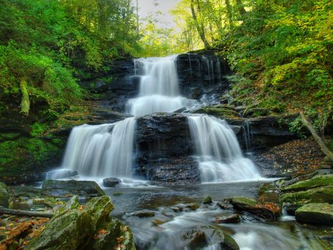 Ricketts Glen State Park 64 by Dracoart-Stock