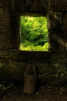 The Green Window by taffmeister