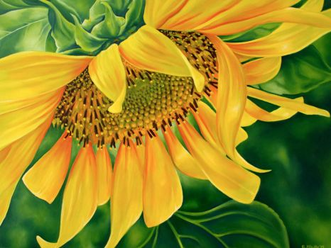 Golden Sunflower by TernFeather