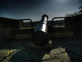 Cannon by haxxy